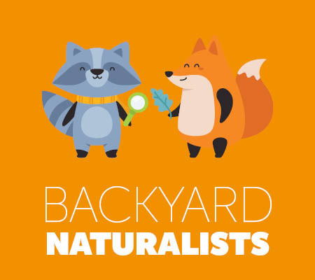 Backyard Naturalists