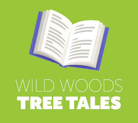 Wild Woods Tree Tales