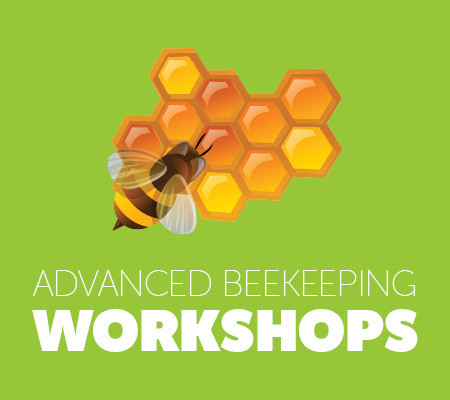 Advanced Beekeeping Workshops