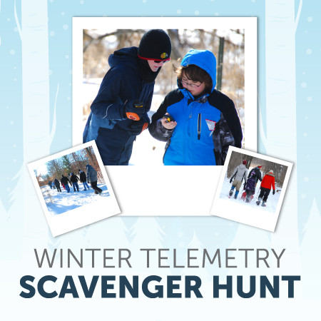 Winter Telemetry Scavenger Hunt